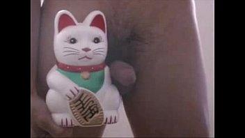versioacute_n pornography del gato de mixta.